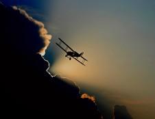 Prancūzai nori sukurti gamtai draugišką lėktuvą iš medienos