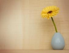 Švedas ieško vazų iš glazūruotos akmens masės gamintojų
