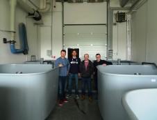 Klaipėdoje sukurta eksperimentinė krevečių auginimo bazė