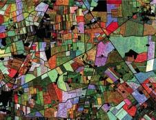 Palydovinė technologija - smulkiesiems ūkininkams