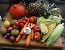Rumunai ieško vaisių ir daržovių perdirbimo įrangos gamintojų