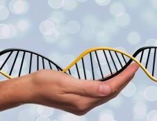 Šveicarai ieško genomo sekos nustatinėtųjų