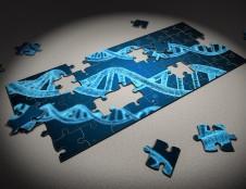 Korėjiečiai ieško partnerių iš baltymų inžinerijos srities