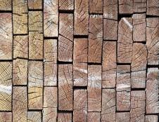 Slovėnai ieško medienos tiekėjų