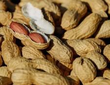 Liuksemburgiečiai ieško riešutų tiekėjų