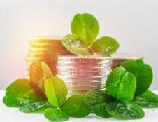 Eco-inovacijos kepinių pramonėje