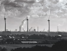 Vokietijos aplinkosaugos fondas kviečia stažuotis šios šalies universitetuose, įmonėse, valstybės įstaigose