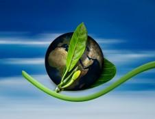 Ekologiškesniam verslui – 1,5 mln. eurų ES investicijų, bus finansuojamas ir ekologinis ženklinimas
