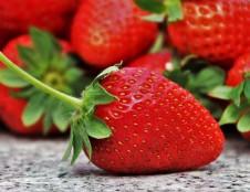 Verslo misija į Japoniją organiško maisto ir gėrimų gamintojams