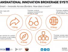 TIBS – jūsų įmonės raktas į tarptautinę partnerystę