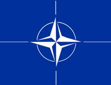 Nuo naujų metų leidimus dalyvauti NATO skelbiamuose konkursuose išduos Viešųjų pirkimų tarnyba