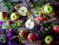 Austrijos kompanija ieško pesticidais neapdorotų, džiovintų augalų ir jų dalių (žiedlapių, žiedpumpurių ir t.t.) tiekėjų