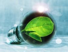 Žalieji pirkimai – žingsnis žiedinės ekonomikos link