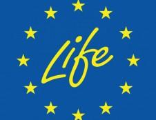 """Nevyriausybinės organizacijos kviečiamos teikti paraiškas """"LIFE"""" programos paramai"""