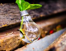 Idėja verslui – maisto produktų kūrimas senjorams