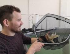 Klaipėda taps inovatyvios akvakultūros vasaros hub'u