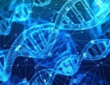 Ispanijos bendrovė ieško partnerių, kurie dirba su genetika